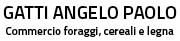 Gatti Angelo Paolo